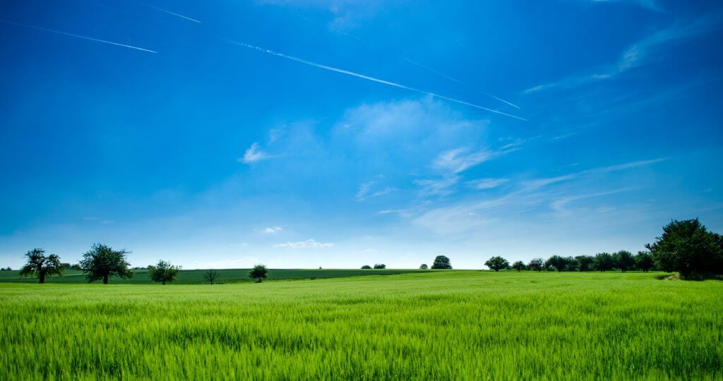 agriculture_bright_clouds