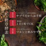 takumi_yasoukouso