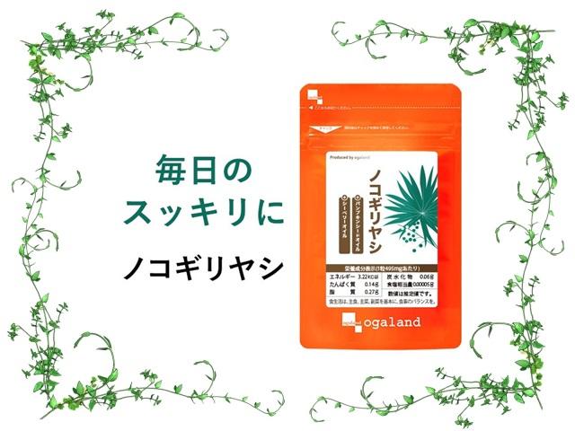 ogaland_nokogiriyashi